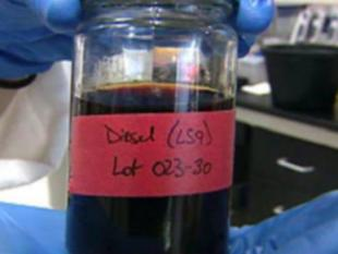 Bacterie eet afval en poept petroleum