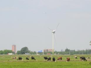 Kostprijs windmolens kunstmatig laag gehouden