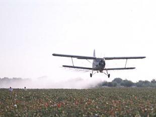 Superonkruid drijft boeren tot wanhoop