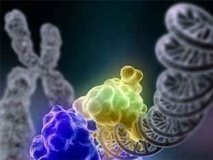 Nanodeeltjes beschadigen DNA zonder het aan te raken