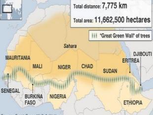Afrikaanse ´Great green Wall´ vraagt miljarden, maar vooral geduld