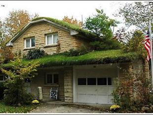 Eindelijk een groen dak: