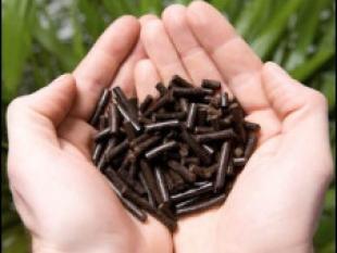 Geroosterde biomassa: duurzame exporttechnologie