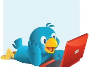 Gezocht op Twitter: het laatste nieuws