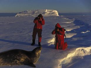 Niet naar Antarctica