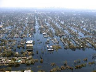 Bay Area trekt zich met hulp van Nederland op het droge