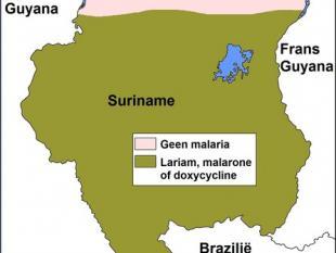 Malaria in Suriname bijna uitgebannen