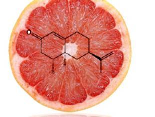 De nieuwste fruitgeuren en -smaken komen uit de fabriek