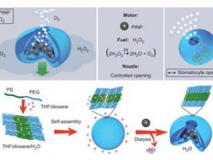 Nanoraket door vervoer in lichaam na te bootsen