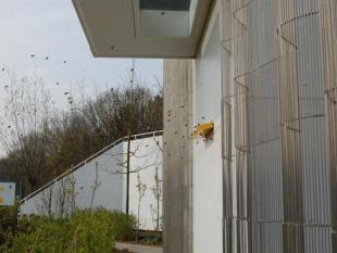 Bijen traceersysteem van studenten helpt onderzoek naar bijensterfte