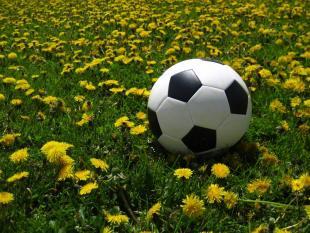 De bal is ronder, dankzij Frank Schaper