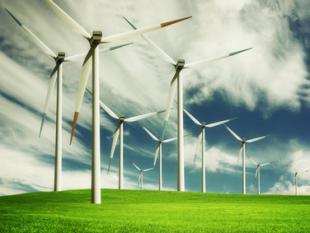 DAISY: een frisse wind in innovatief Nederland