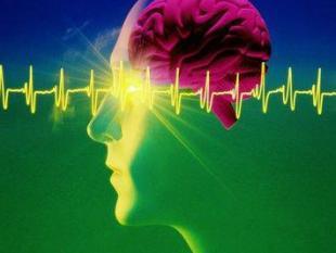 Talent is het resultaat van een gruwelijk neuronendrama