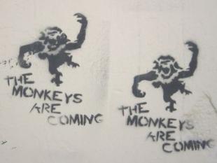 De actieve internetgebruiker als typende aap