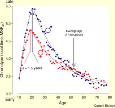 De biologische klok van pubers loopt 2 uur achter op die van mensen van middelbare leeftijd. Bij mannen is het verschil groter dan bij vrouwen.
