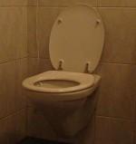 Het toilet: de plek voor je grote, kleine én digitale boodschap